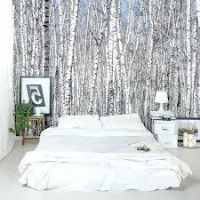 papier peint chambre adulte phenomenal papier peint chambre adulte tendance gacomactrique une