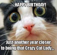 Cat Meme Ladies - any cat ladies cat meme birthday funny funny birthday memes