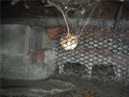 alpena mi proven concrete leveling basement waterproofing