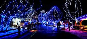 christmas lights san diego christmas lights san diego san diego hotlimos group tours