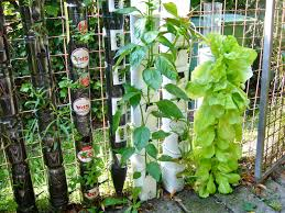 diy garden trellis ideas trash backwards blog with diy garden