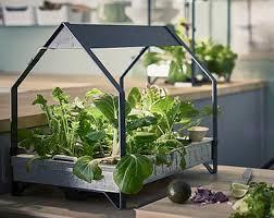 Ikea Flatpack Vertical Garden Ikea Just Launched An Indoor Garden That Never Stops Growing Food
