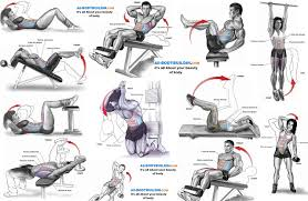 Anatomy And Physiology Exercise 10 Top 10 Abs Exercises Gym Workout Chart Pinterest Exercises