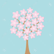 tree flowers blooming cherry blossom set blue
