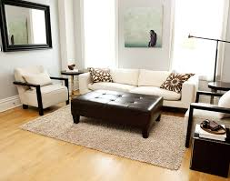 Decorating With Area Rugs On Hardwood Floors by Ideas U0026 Tips Inspiring Living Room Decor Ideas With White Shag