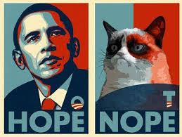 Nope Meme - hope nope cat meme cat planet cat planet