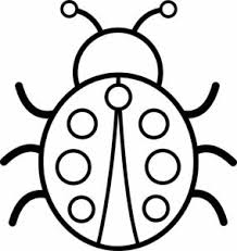 coloring pages bug pictures to color the ant coloring pages bug