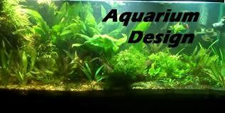 cuisine amazing planted aquarium designs design and ideas