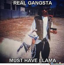 Real Gangster Meme - gangster meme real gangster must have llama golfian com