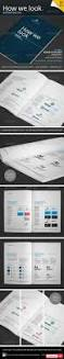 graphicriver how we look brand guidelines all design