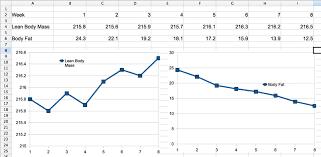 measuring progress scooby u0027s home workouts