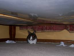 the thing under the bed nestle by lsayaku on deviantart