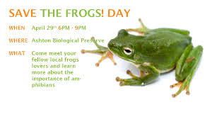 save the frogs florida