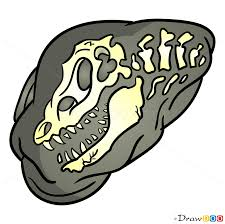 how to draw fossil dinosaurus