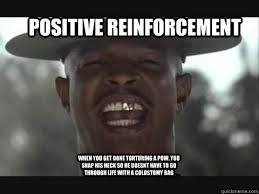 Funny Encouraging Memes - positive reinforcement when you get done torturing a pow you snap