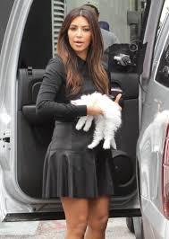 Kim Kardashian Hair Growth Pills Kim Kardashian And New Kitten Mercy In Miami Celebuzz
