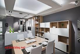 salon salle a manger cuisine salon salle a manger cuisine ouverte moderne idée déco