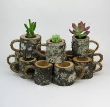 24 rustic wedding favors succulent log planters rustic