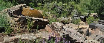 Mountain Landscaping Ideas High End Luxury Garden Design Build Mountain Xeriscape Landscape