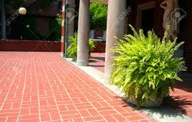 plants adjacent to pillars of a historic house corridor stock