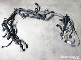 building an engine wiring harness import tuner magazine