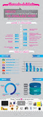 Infografic Resume 9 Best Infographic Resumes Images On Pinterest Infographic