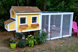 Backyard Chicken Coops Australia by