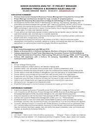 Analyst Resume Examples Project Analyst Resume Sample Template