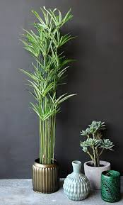 Fake Plants How To Have Pots Of Fun With House Plants Whether They Are Real Or
