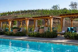 Backyard Vineyard Design by Allegretto Vineyard Resort Design Collaborative