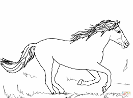 mustang wild horse coloring page free printable coloring pages