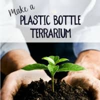 witty hoots how to make this fantastic plastic bottle terrarium