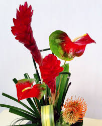 most popular flowers make your space tropical with exotic flowers ah sam florist