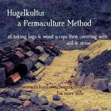 Backyard Sugaring Backyard Sugaring The Permaculture Way An Excerpt Permaculture