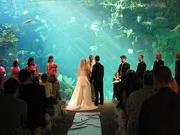 wedding location ideas unique wedding venues don t limit yourself to the ordinary