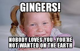 Ginger Memes - ginger pubes gingers nobody loves you you re not wanted on