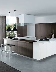 mod鑞e de cuisine moderne 174 best kitchen designs images on kitchen ideas