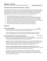 international business resume sample resume peppapp