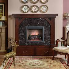 Fireplace Electric Insert by Living Room Kinds Of Good Electric Fireplace For Modern Living