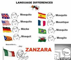 Different Languages Meme - italian can be a weird language too language bizarre