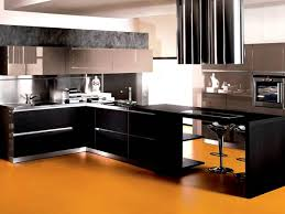 black cabinet color for home kitchen