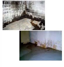 basement waterproofing foundation solutions for your home