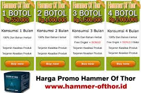 alamat toko jual hammer of thor di ambon 081328887815 hammer of