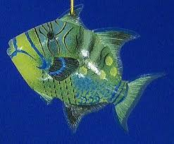 79 best glass fish images on fishing tropical fish