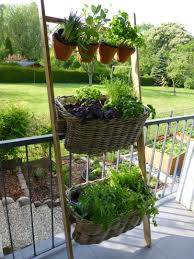 gem se pflanzen balkon kräuterleiter neuland