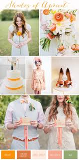 best 20 apricot wedding ideas on pinterest coral boutonniere