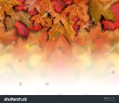 halloween background with border orange red fall background top border stock photo 62715253