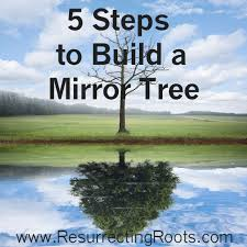 how to build a mirror tree resurrecting roots