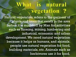 Wisconsin vegetaion images Natural vegetation and wildlife jpg