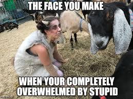 Dumb Girl Meme - stupid girl meme imgflip